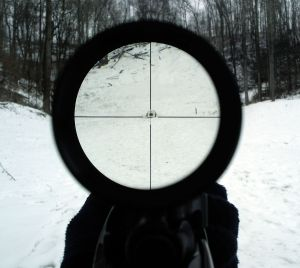 1200px-Edit_4x_rifle_scope
