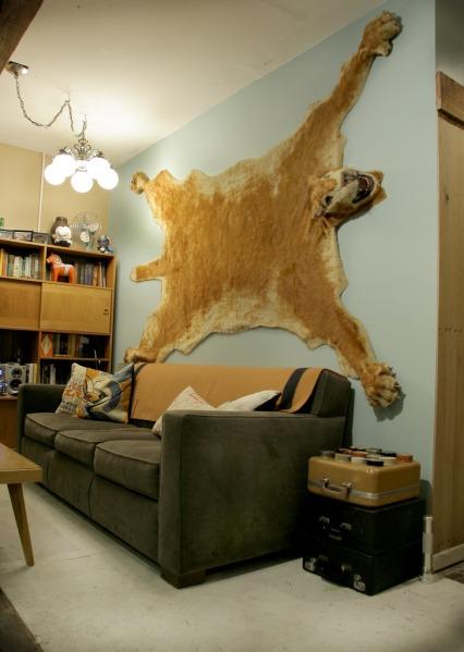 pelt on wall